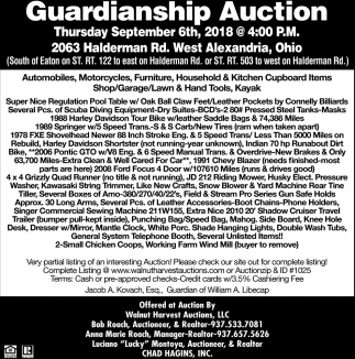 Guardianship Auction
